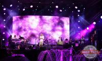 pivo-festival-2015-17-07---37.JPG